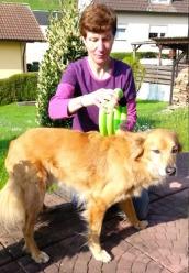 Hund + smovey
